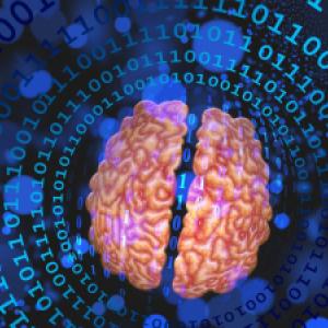 Toto by ste o detskom mozgu mali vedieť