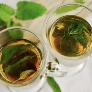 EKO TIP: Prírodné alternatívy voči liekom