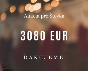 Pre Števka sme v aukcii vyzbierali 3080 Eur!