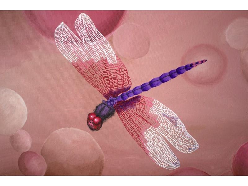Kráľovná hmyzu