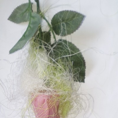 Mydlova ružička