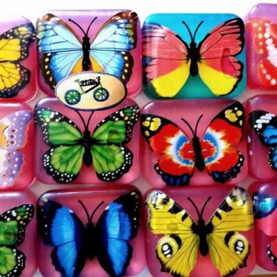 Veľký motýľ
