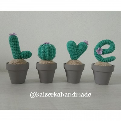 Kaktusová láska