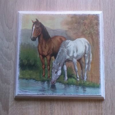 Obrázok - Smädné koníky