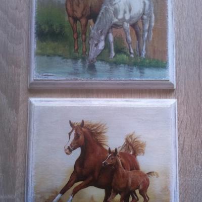 Obrázok - Cválajúce koníky
