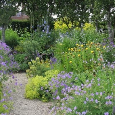 Poradenstvo-Záhradná architektura