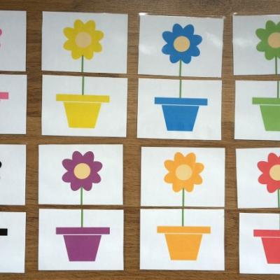 Priradovanie podla farieb - kvety a kvetinace