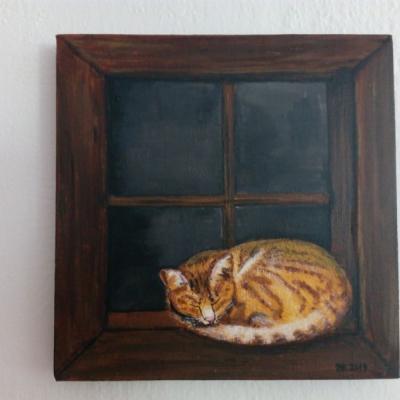 Mačka v okne