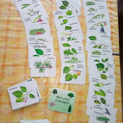 Atlas stromov kartičky - 48 stromov