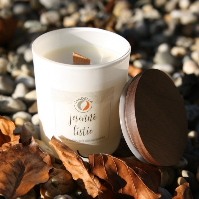 Jesenné lístie - sójová sviečka (M)