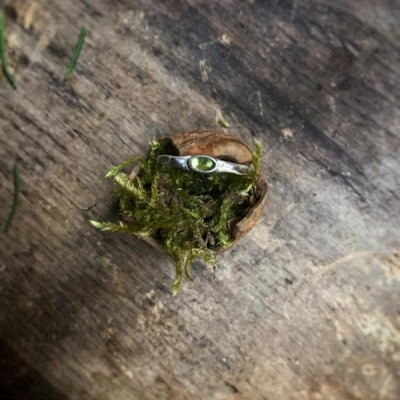 Tepaný prsteň Olivín