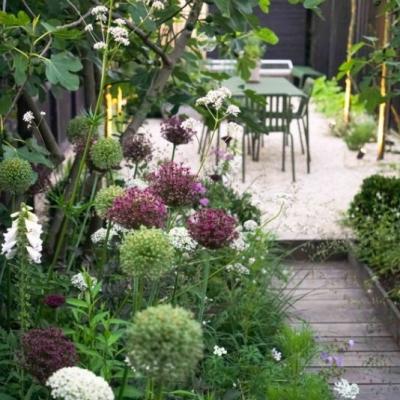 Komplexný návrh záhrady