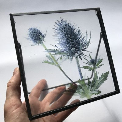 Transparentná foto BODLIAK s rámikom