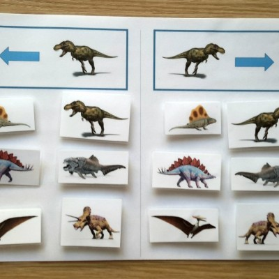 Pravo-ľavá orientácia (Dinosaury)