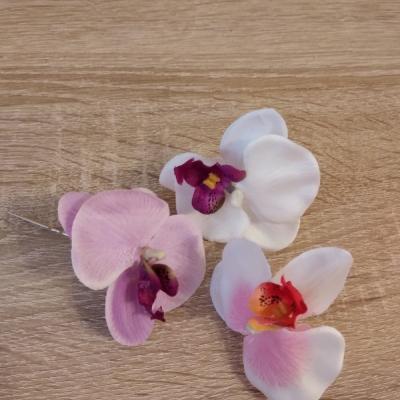 Vlasenky Orchidea