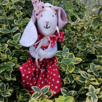 Bodkovana zajka