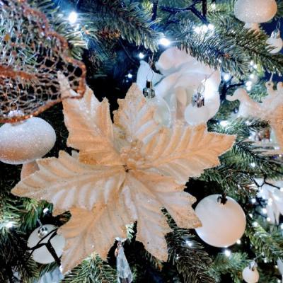 Biela vianočná ruža na stipci