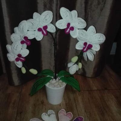 Háčkovaná orchidea, ktorá Vám bude stále kvitnúť aj bez polievania a  hnojenia:-) Krásna, bohatá, veľká orchidea pozostáva z: 5