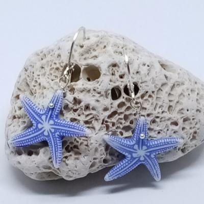 Morská hviezdica
