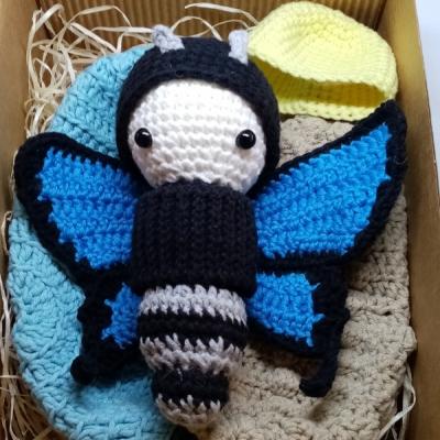Vývoj motýľa - modrého