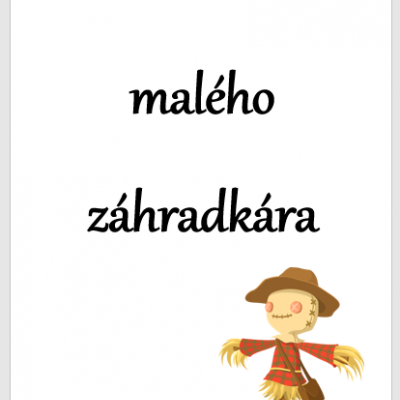 DENNÍK MALÉHO ZÁHRADKÁRA - pdf