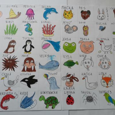 Komunikačné kartičky zvieratá