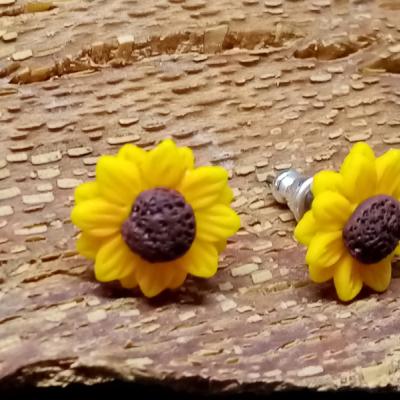 Slnečnice malé