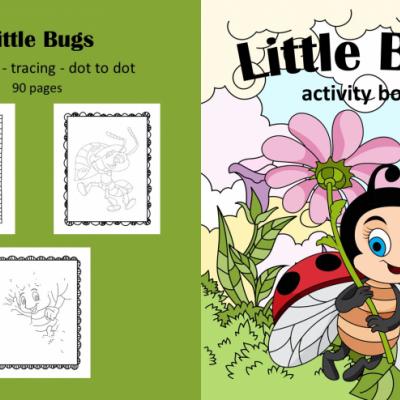 Little Bugs - activity book
